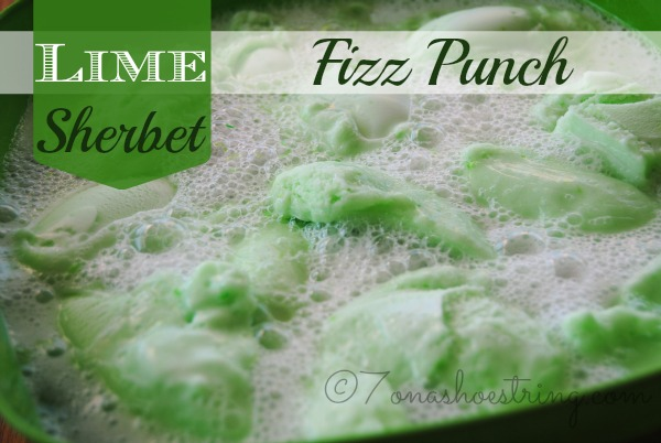 Lime Sherbet Fizz Punch