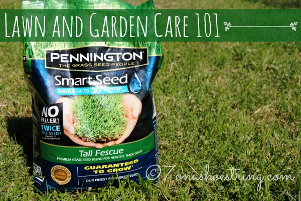 Lawn and Garden Care 101 with Pennington Smart Seed