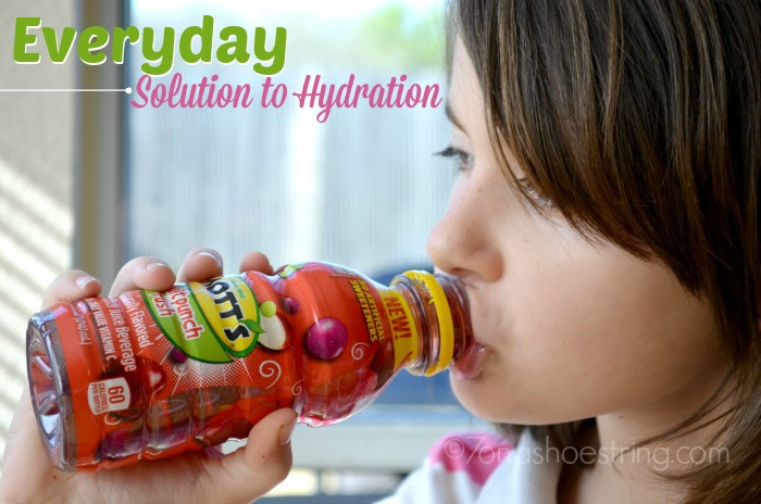Everyday Solution to Hydration : Mott's Juice Drinks