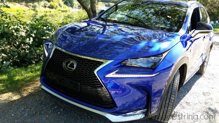 Lexus NX Blue