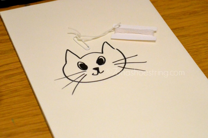 cat drawing during interview