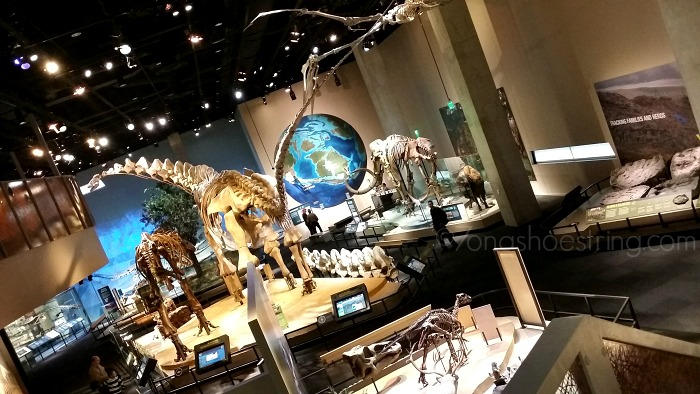 Explore and Discover More at the Perot Museum in Dallas