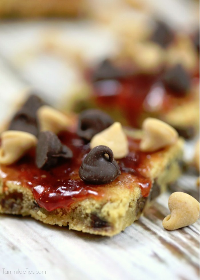 Peanut-butter-and-jelly-bars-TammileeTips