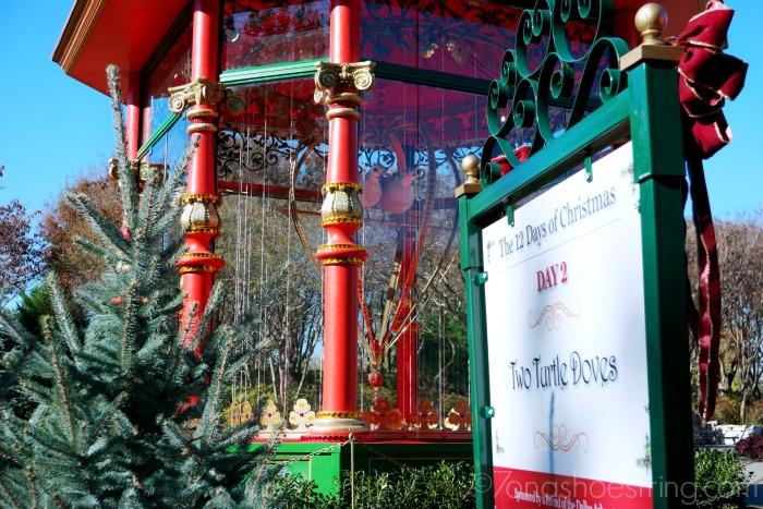 12-Days-of-Christmas-at-Dallas-Arboretum