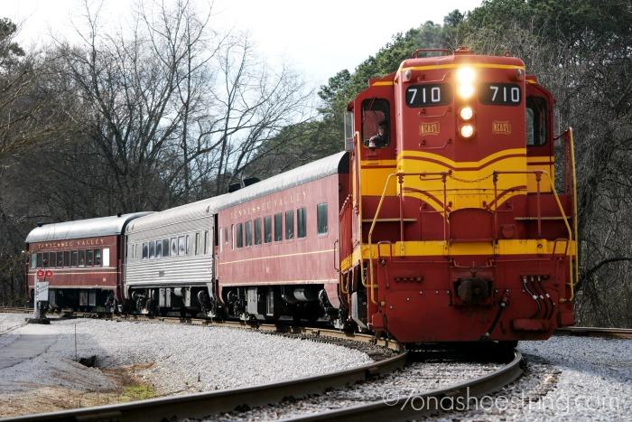 Chattanooga Spring Break Safari And Scavenger Hunt