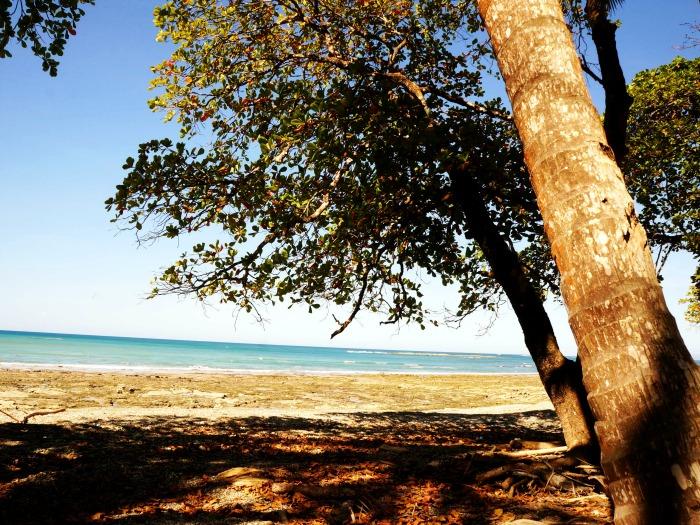 Playa Manzanillo