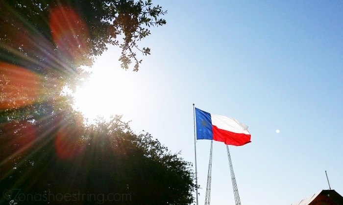 Texas - Lone Star State flag