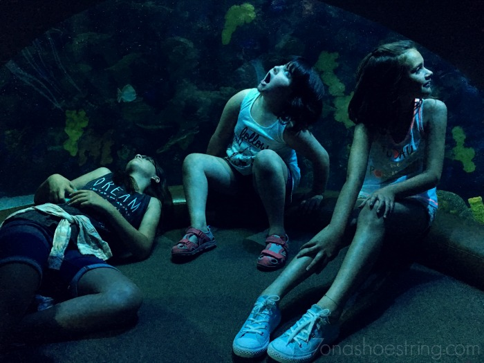 Girls at the Tennessee Aquarium - Chattanooga
