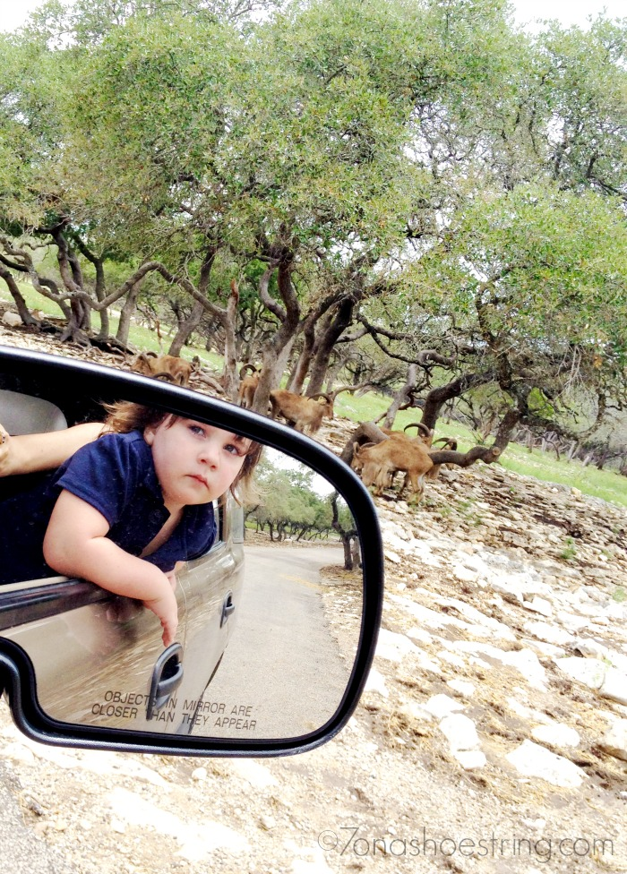visit a wildlife ranch