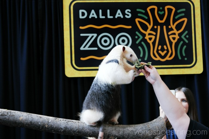 Frito-Lay 2 GO (FL2Go) and the Association of Zoos and Aquariums (AZA)