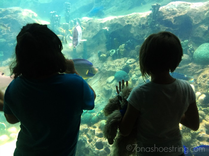 friends at SeaWorld aquarium