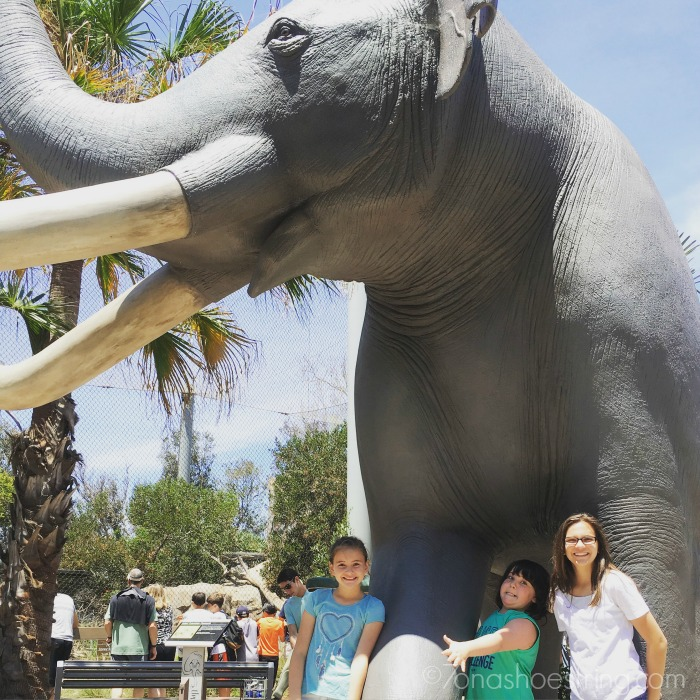 San Diego Zoo family fun