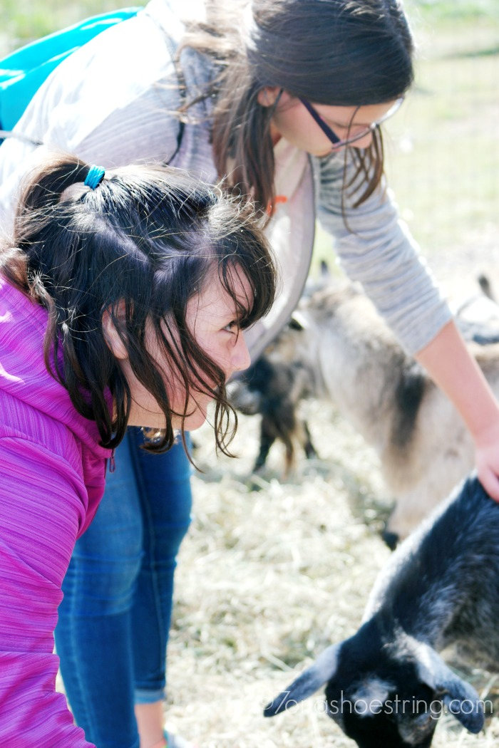 Mt-Hood-Territory-for-kids