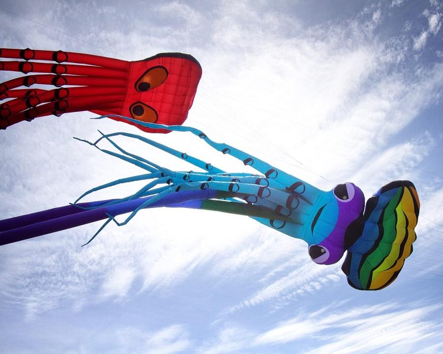 Celebrate the Wind at Trinity River Wind Festival in Dallas