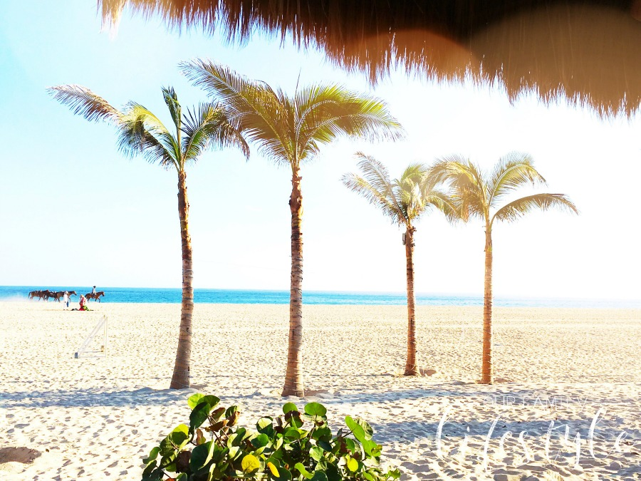 beachside at Holiday Inn Los Cabos all inclusive
