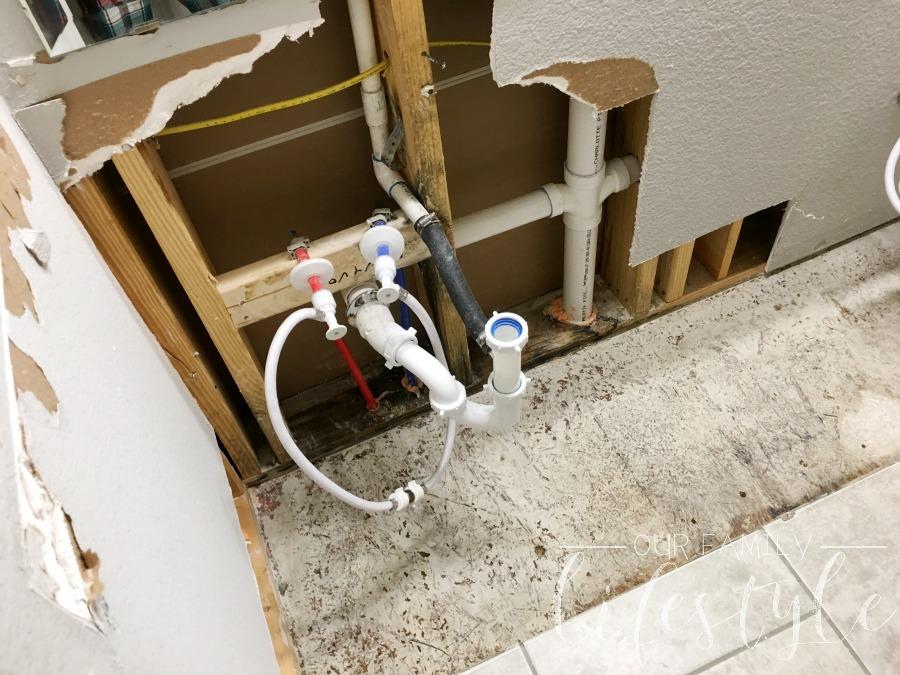 black mold remediation service