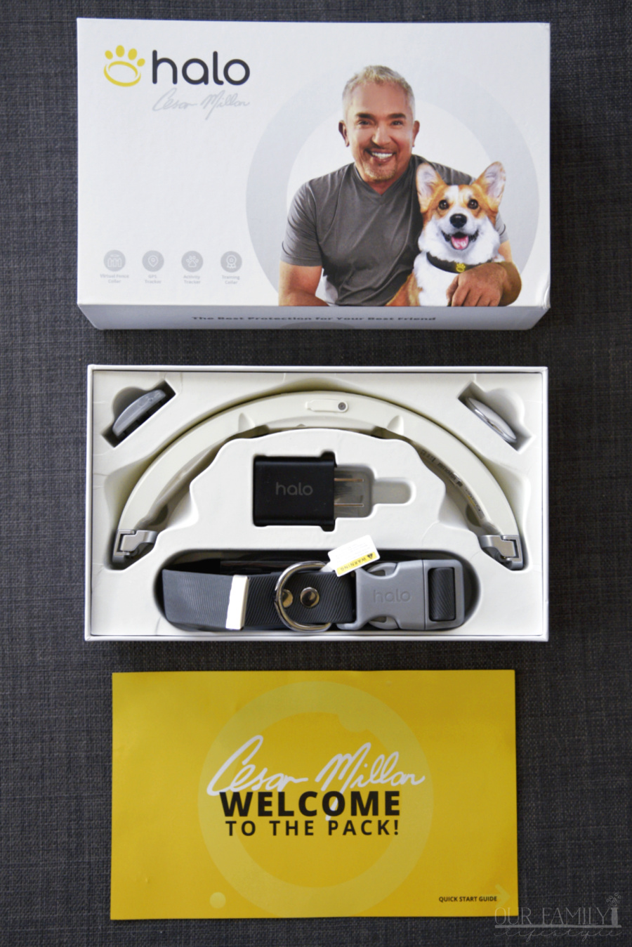 The Halo Collar by Cesar Millan