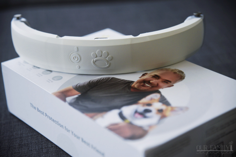 smart collar for dogs
