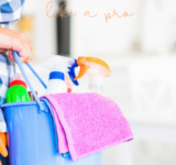 How to Spring Clean Your House Like A Pro